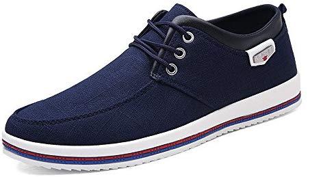 CUSTOME Chaussures en toile pour hommes Chaussures de marche plates distraites douces et légères Sneaker Sneaker Comfort