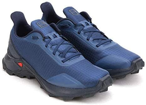 SALOMON Alphacross, chaussures de course pour homme